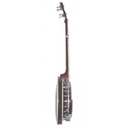Banjo gaucher Bluegrass Special Gold Tone BG-250F