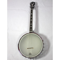 Gold Tone IT-250 - Banjo Tenor Irlandais