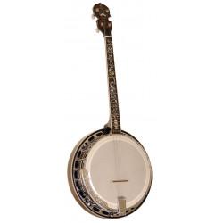 Banjo Tenor Special AT- Gold Tone TS-250AT