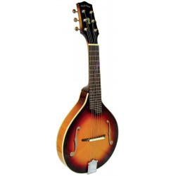 Mandoline gaucher 6 cordes - Gold Tone GM-6