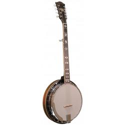Banjo Bluegrass 10 cordes Gold Tone BG-10 (+ étui)